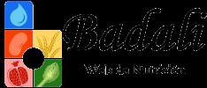 PNG BADALI_logo_horizontal